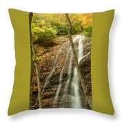 Wash Hollow Falls Nantahala National Forest Nc Throw Pillow