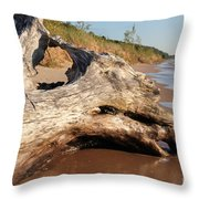 Washing Away Throw Pillow