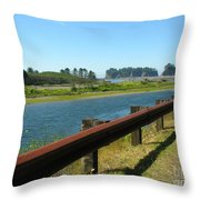 Washington Coast Throw Pillow