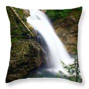 Washington Falls 2 Throw Pillow