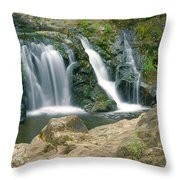 Washington Falls 3 Throw Pillow