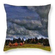 Washington Landscape Throw Pillow