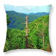 Washington National Forest,wv Throw Pillow