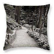 Washington Park Throw Pillow