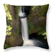 Washington Waterfall Throw Pillow