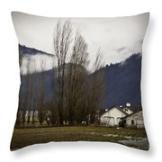 Washington Winter Day Throw Pillow