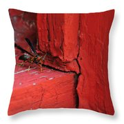 Wasp And Red Throw Pillow