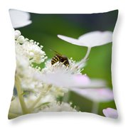 Wasp At Work Throw Pillow