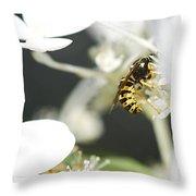 Wasp At Wotk Throw Pillow
