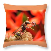 Wasp Blowing Bubble 16057b Throw Pillow
