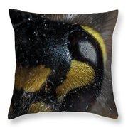 Wasp Eye Throw Pillow