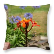 Wasp In Flight Throw Pillow