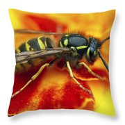 Wasp In The Bloom Throw Pillow