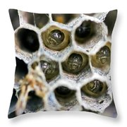 Wasp Nursery Throw Pillow