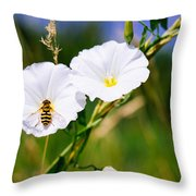 Wasp On A White Flower Throw Pillow