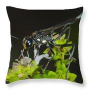 Wasp Visit Throw Pillow