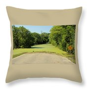 Watch For Water On Road Throw Pillow