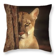 Watcher In The Woods Throw Pillow