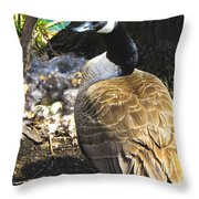 Watchful And Proud Throw Pillow