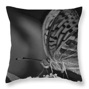 Watchful Butterfly Throw Pillow
