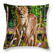 Watchful Lioness Throw Pillow