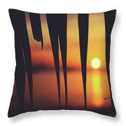 Watching Beautiful Caribbean Sunset From A Simple Beach Shack Throw Pillow