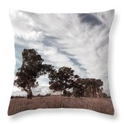 Watching Clouds Float Across The Sky Throw Pillow