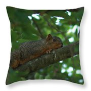 Watching From Above Throw Pillow
