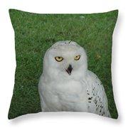 Watching Owl Throw Pillow