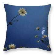 Watching The Day Float By Throw Pillow