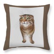 Watching The Snow Falling Throw Pillow