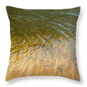 Water Abstract - 1 Throw Pillow