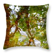 Water Abstract 17 Throw Pillow