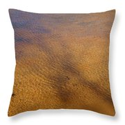Water Abstract - 4 Throw Pillow