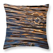 Water Abstract 4 Throw Pillow