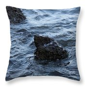 Water And A Rock Throw Pillow