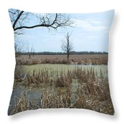Water And Cattails Throw Pillow