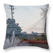Water And Metal Throw Pillow