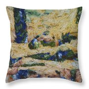 Water And River Delta  Throw Pillow