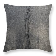 Water And Sand Throw Pillow