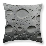 Water And Steel Throw Pillow