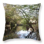 Water At Gilbert Stuart Throw Pillow