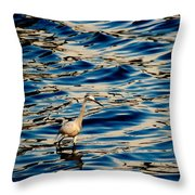 Water Bird Series 11 Throw Pillow
