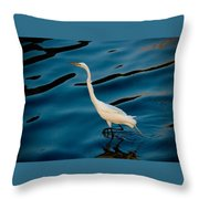 Water Bird Series 30 Throw Pillow