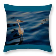 Water Bird Series 31 Throw Pillow