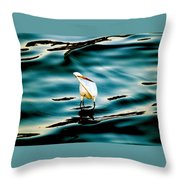 Water Bird Series 33 Throw Pillow