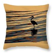 Water Birds Series 3 Throw Pillow