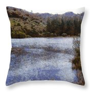 Water Body Surrounded By Greenery Throw Pillow