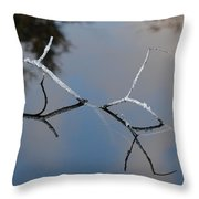 Water Bridge In Color Throw Pillow