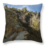 Water Canyon Sky View Throw Pillow